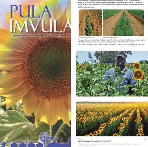 Pula Imvula forms an integral part of the communication strategy of the GSA Farmer Development Program